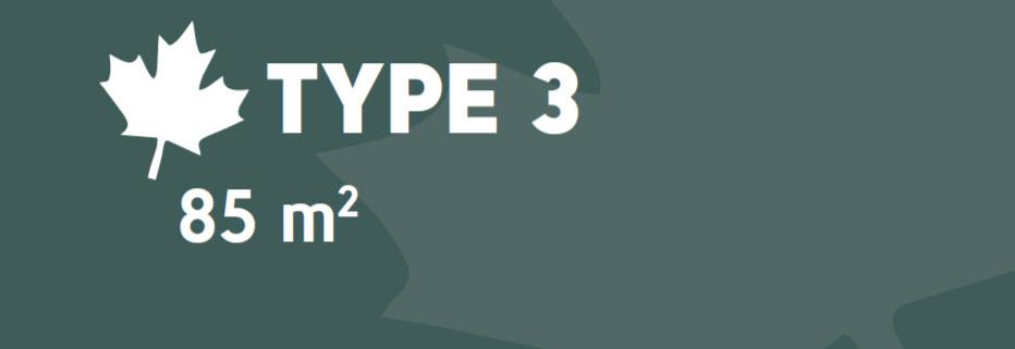 Type 3 Logo